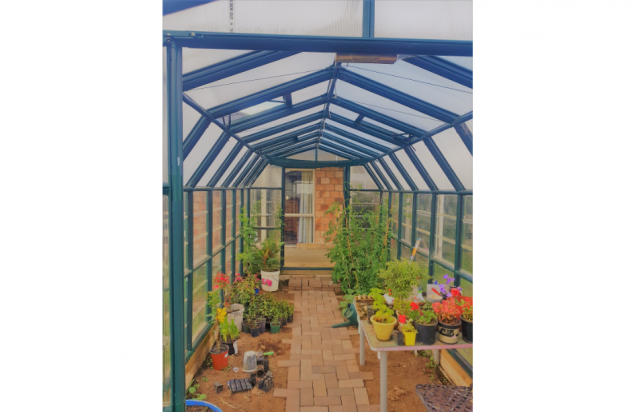 Factors to Consider When Buying a Glasshouse or Greenhouse