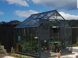 Medium sized Glasshouse